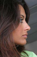Hotesse ASO (2007)